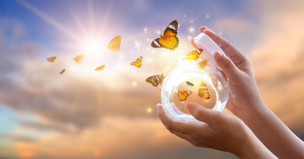 girl-frees-butterfly-from-jar-golden-blue-moment-concept-freedom_34998-310.jpg